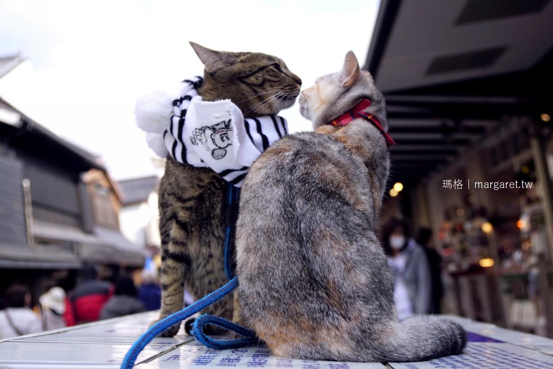 福岡。太宰府天滿宮表參道美食漫遊|可愛貓咪拍瘋了