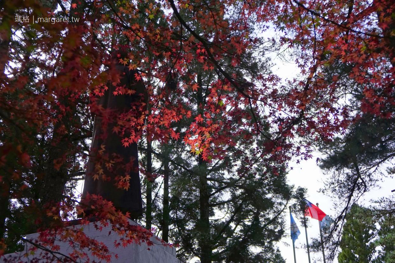 福壽山農場。松盧楓紅2019實況(把握11月底前)|梨山秋日的蜜蘋果香氣