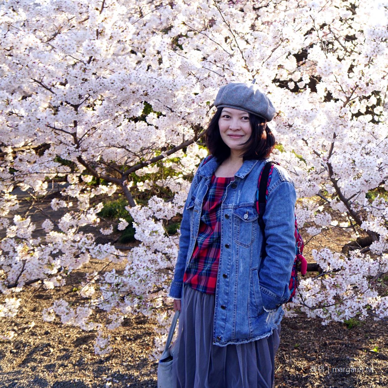 新宿御苑。櫻花樹下野餐首選|東京賞櫻 @瑪格。圖寫生活
