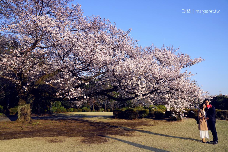 新宿御苑。櫻花樹下野餐首選|東京賞櫻