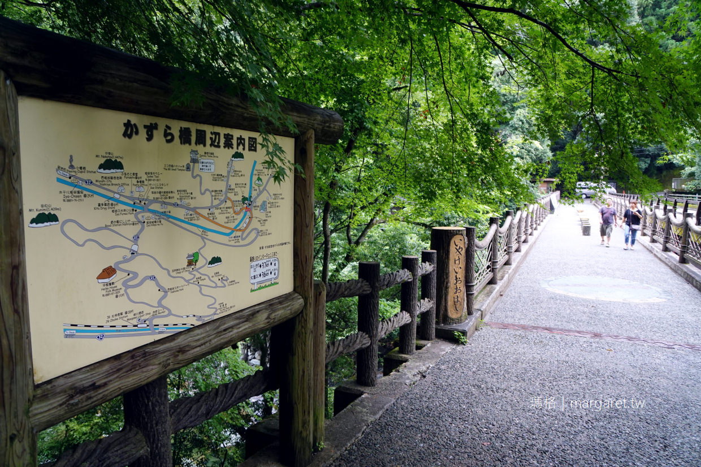 祖谷藤蔓橋|日本三大奇橋。國家重要有形民俗文化財 (交通建議)