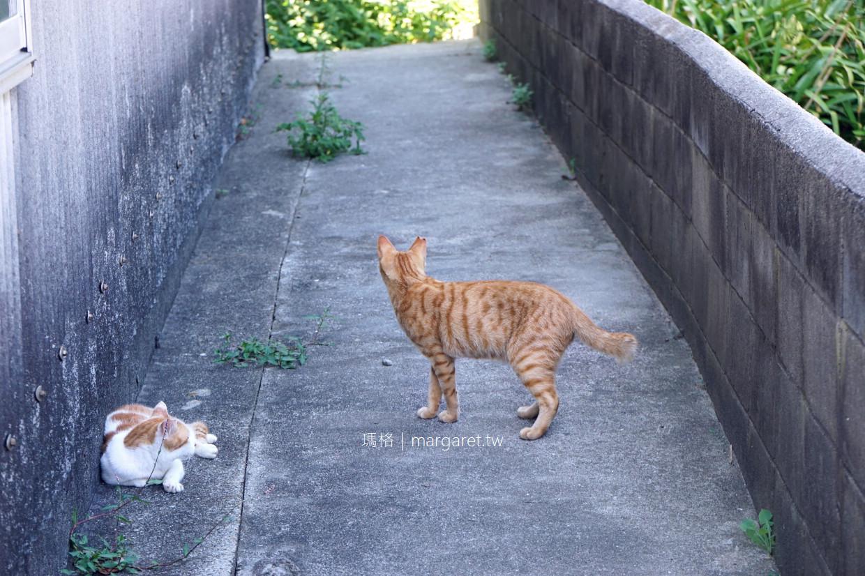 男木島。香川貓島|豐玉姬神社的海景鳥居