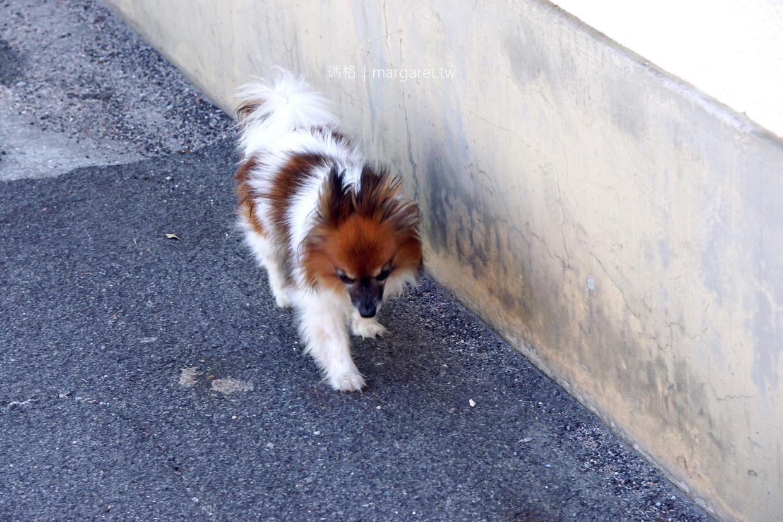 夢迴青空。男木中小學體育館的藍天白雲|貓島上的狗旅伴