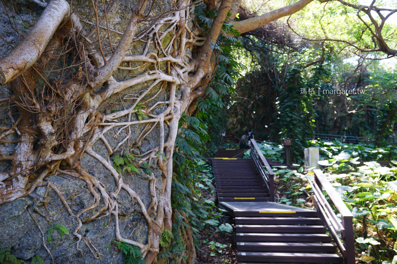 山豬溝森林步道。一線天|走進小琉球原始叢林