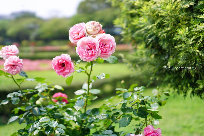 最新推播訊息:超完整!台北市賞花景點、年度各月份花曆、花季