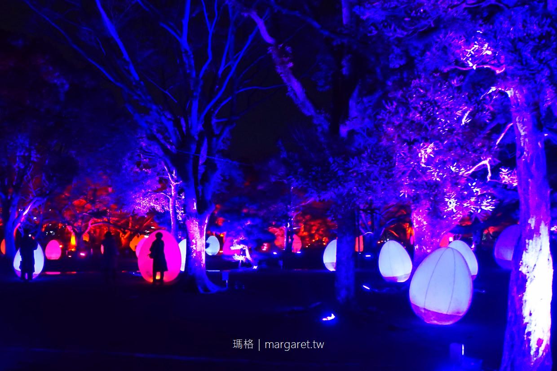 九州冬季祭典。舞鶴公園福岡城光之祭 Light Festival in Fukuoka Castle Ruins 2017~2018