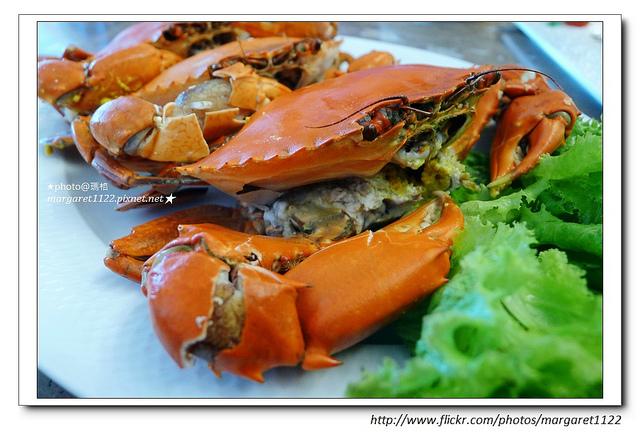 秋膏氣爽,一起吃肥美秋蟹吧! @瑪格。圖寫生活