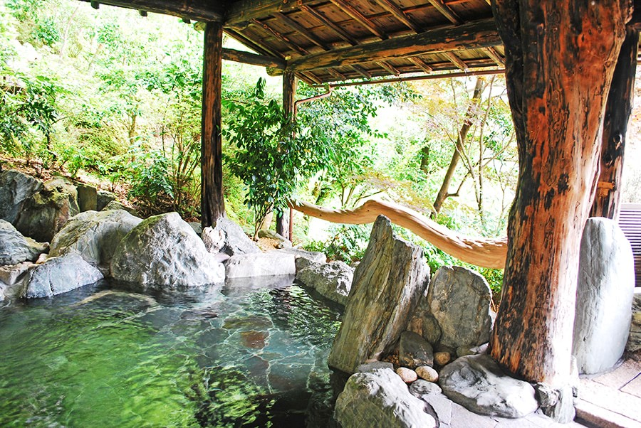 新祖谷溫泉飯店蔓橋。天空露天風呂|日本三大秘湯